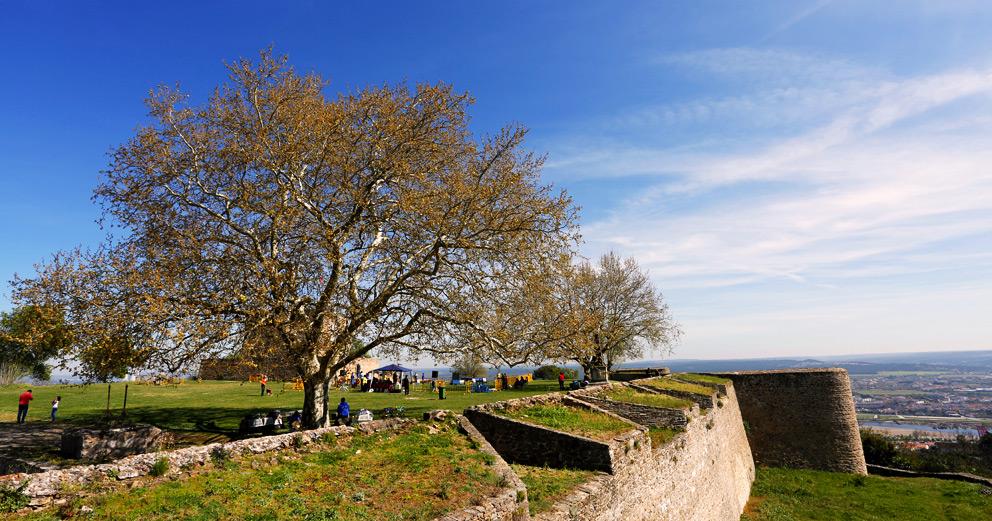 Castelo Fortaleza
